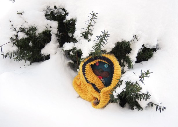 Edgar is wrapped up in a yellow wolly hat.  He's under the branches of a small evergreen but he's surrounded by snow.