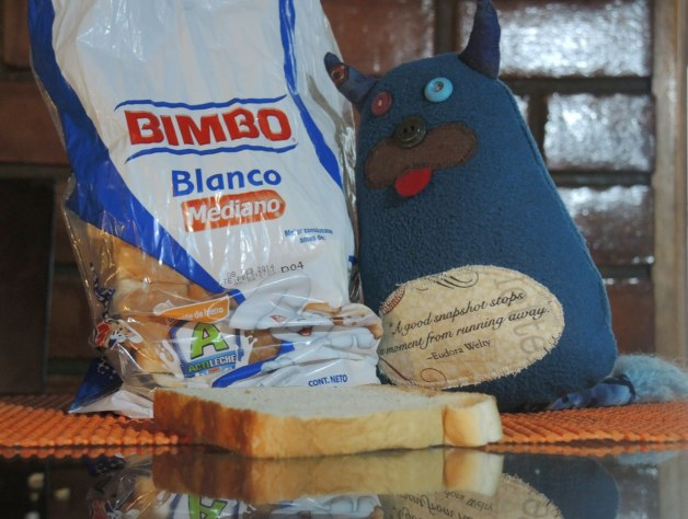 Edgar is cuddling up to a bag of sliced bread.  The brand of bread is called Bimbo