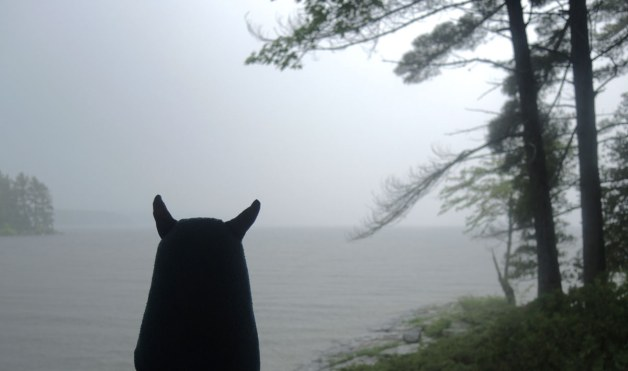 Edgar is looking out over the lake in a rain storm.  It it grey, wet and misty.