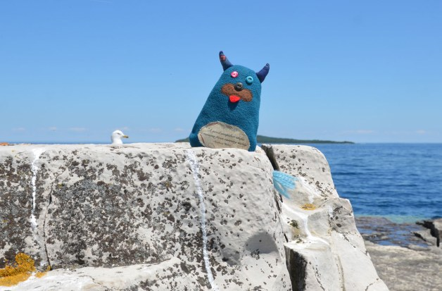 Edgar is sitting on a large granite rock beside the blue waters of Georgian Bay.   There is also a seagull in the picture.