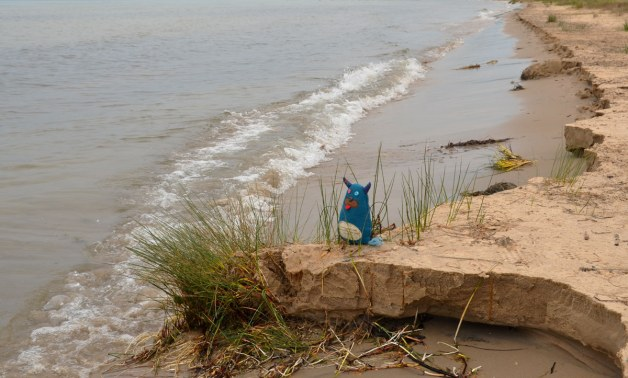 Edgar the little blue monster is standing on a small sandy outcropping  that is about eight inches high, on a beach at the shore of Lake Michigan.  There is a little tuft of grass at the end of the outcropping.