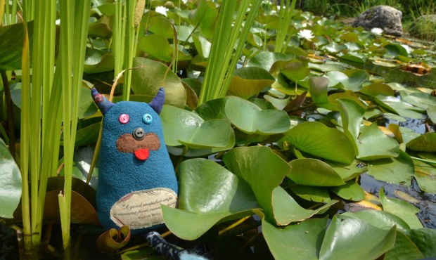 Edgar the little blue monster is sitting at the edge of pond surrounded by water grasses and lily pads.   There are a couple of water lilies in the background.