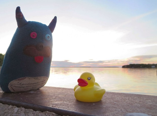 Edgar the little blue monster is sitting on a low concrete wall with the sunset over Georgian Bay behind him.  Dirk, thelittle yellow rubber duckie is sitting beside him