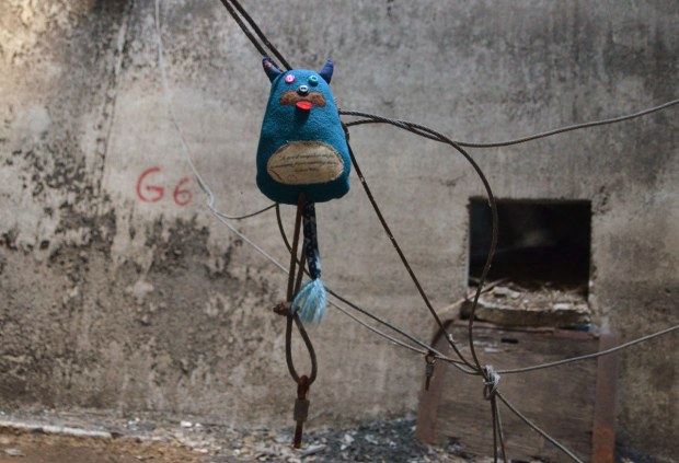 Edgar is suspended from some knotted and tangled wires in an abandoned silo in Buffalo.  The old, grubby grey walls of the silo are behind him.  The wires are hanging from the walls of the silo.