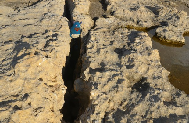 Edgar is wedged into a large crack in a rock.