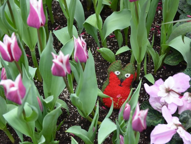 Flora is standing in a garden of pink and white tulips, with some other pink flowers too.