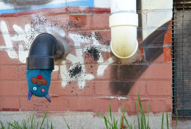 Edgar is hanging upside down from a black pvc vent pipe that is coming out of a brick building.