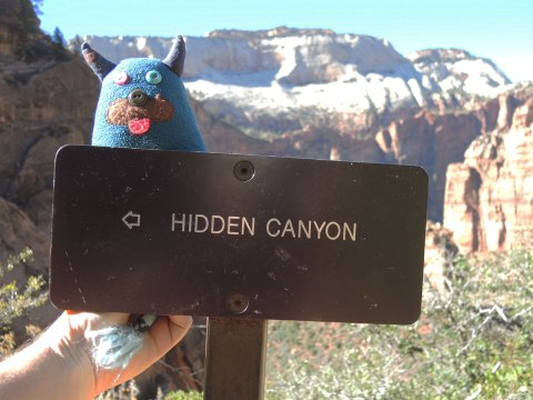 Edgar is being held up to a brown sign that says Hidden Canyon. There is mountain behind him.