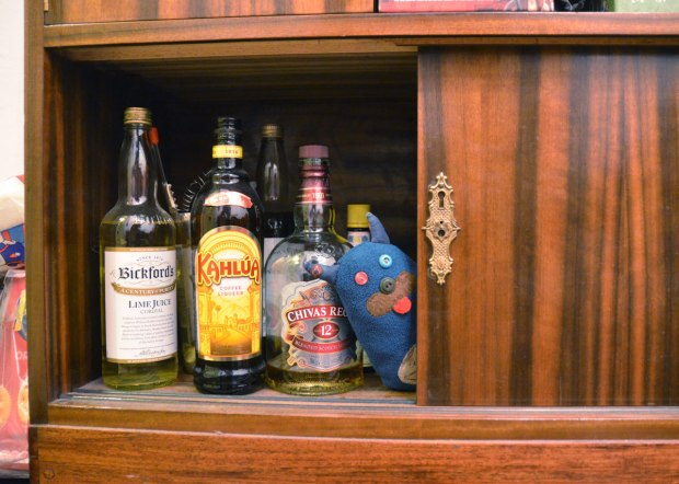 Edgar is peeking out from behind the door of a cupboard that has alcohol bottles in it, Kahlua and Chivas Regal Whiskey as well as a bottle of lime cordial.