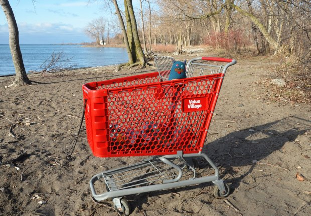 Edgar is in a red Value Village shopping cart that someone has abandoned Cherry Beach. There are some empty pop cans in the cart. Trees in the background.