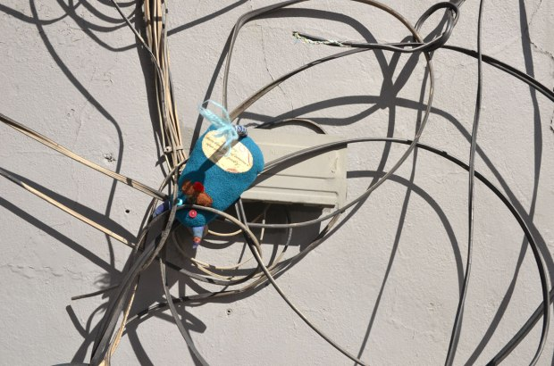 Edgar is all tangled up and hanging upside down amongst wires on a wall