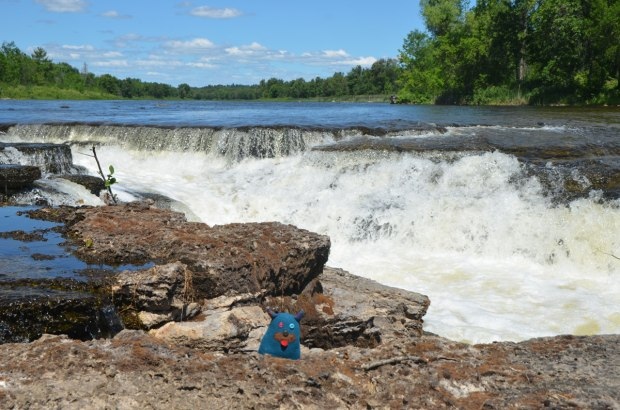 edgar, the little blue monster is standing beside a small waterfall in the Bonnechere River. The banks of the river are limestone and Edgar has wedged himself into a crack.