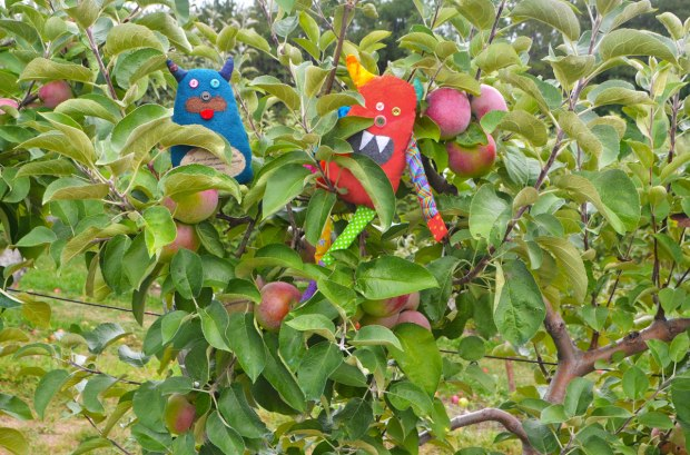Edgar and Bo are sitting in an apple tree with lots of ripe Macintosh apples.
