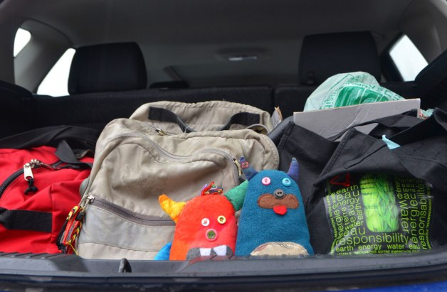 both Bo and Edgar are in the back of a hatchback car, along with a back pack and a duffle bag and other bags as they get ready to go on a road trip